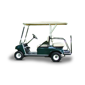 4-&-6-Seat-Buggy (1)-1